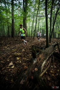 2014-09-20 Forest Run fot.G.Lisowski-17