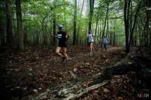 2014-09-20 Forest Run fot.G.Lisowski-36