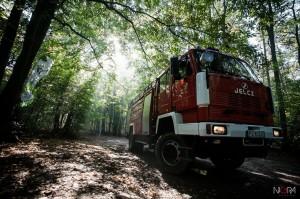 2014-09-20 Forest Run fot.G.Lisowski-37